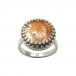 fossilized-coral-ring